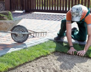 Residential Landscaping services Nambour